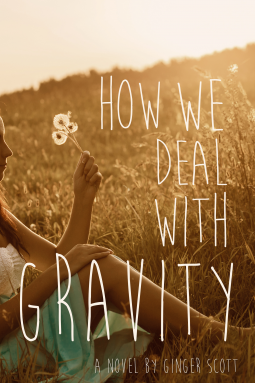 Cover How We Deal with Gravity Englisch