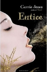 Cover Entice englisch