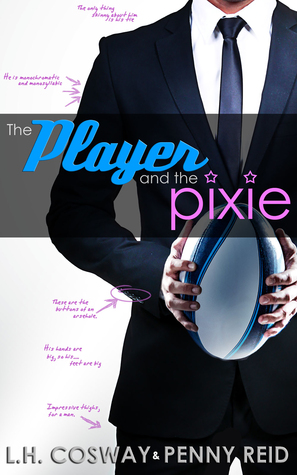 Cover The Player and the Pixie