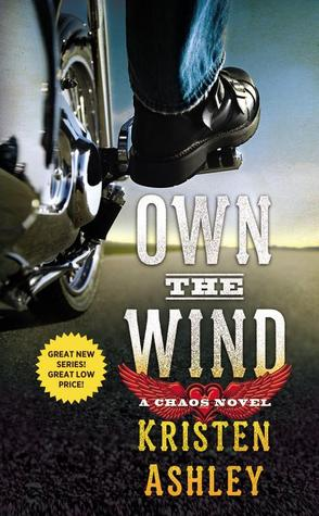 Cover Own the Wind 1