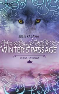 Cover Winter's Passage englisch