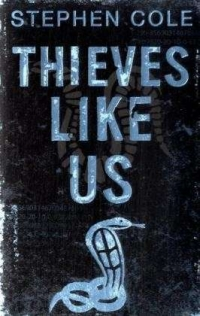 Cover Thieves like us englisch