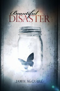 Cover Beautiful Disaster 1 Englisch